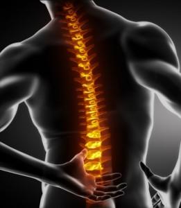 椎間板の変性は痛みを発生させうるのか
