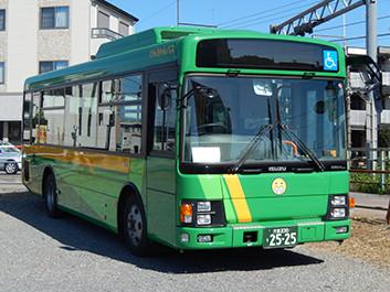 緑のバスですよ