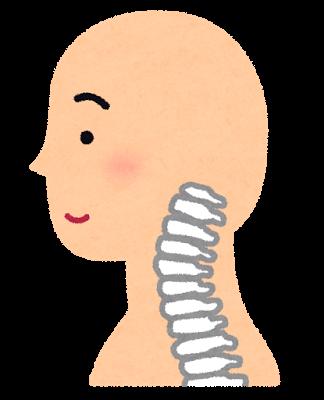 首のイラスト